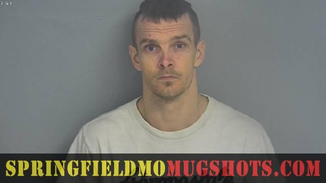 Springfield MO Mugshots   Stephen Joseph Meyle